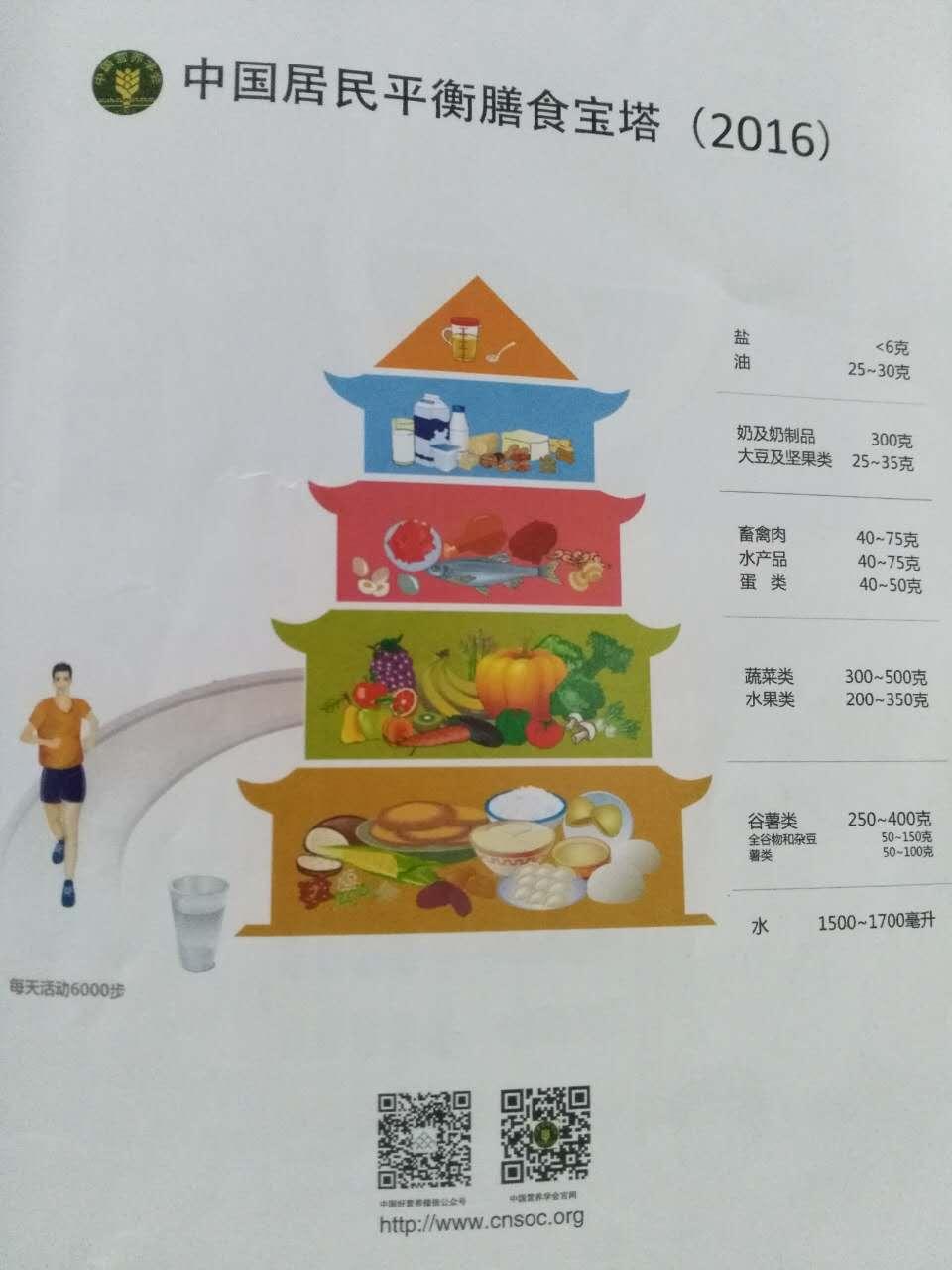 2016年中国居民平衡膳食宝塔
